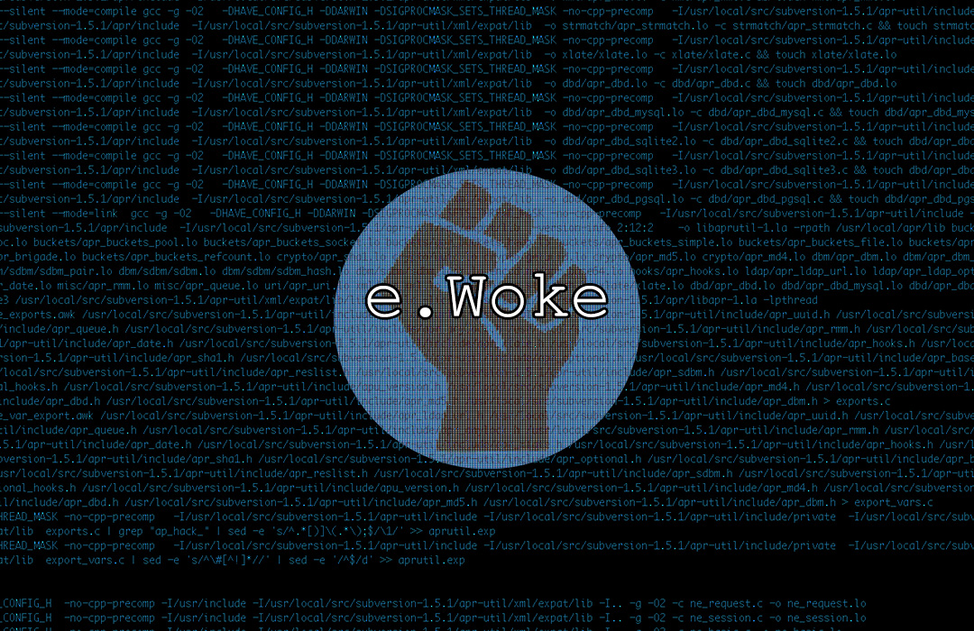 ewoke-graphic-slider