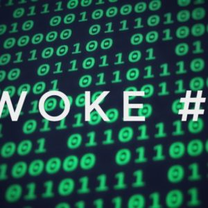 e.woke # 71: Step up to bat for the people!
