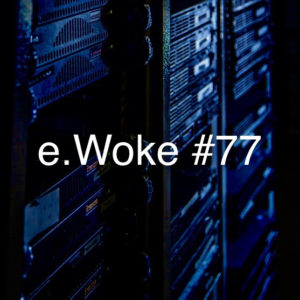 e.Woke #77: Privacy Pillagers