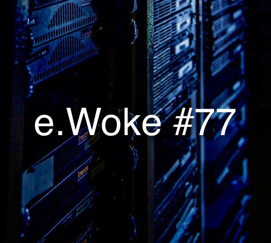 e.Woke #77: Privacy Pillagers