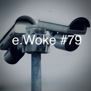 e.Woke #79: Partisan Tech & Government Accountability