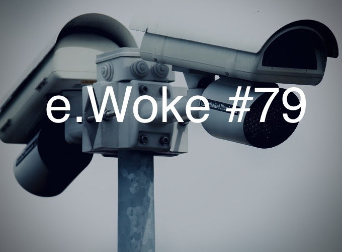 e.Woke #79: Partisan Tech & Government Accountability